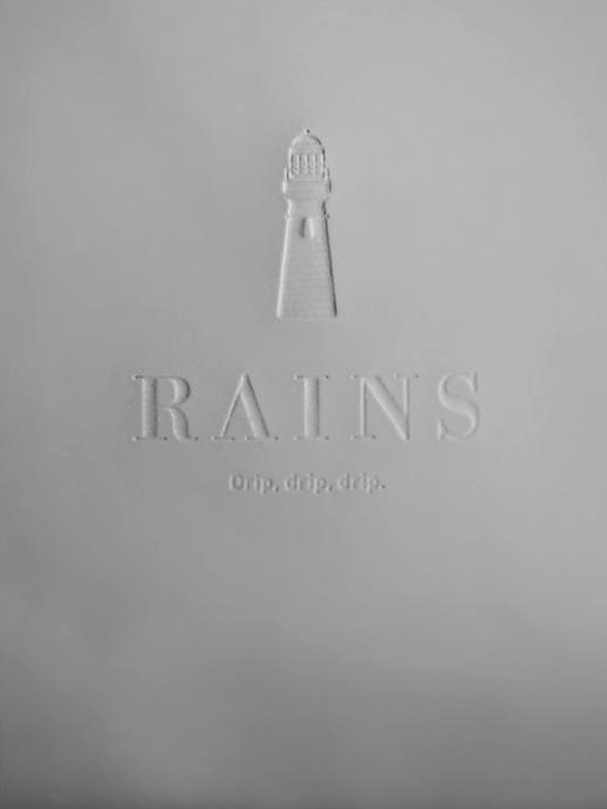 Rains 1284 filed bag stone