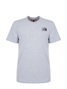 THE NORTH FACE GRAPHIC TEE LIGHT GREY