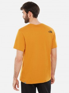 THE NORTH FACE FLASH TEE CITRINE YELLOW