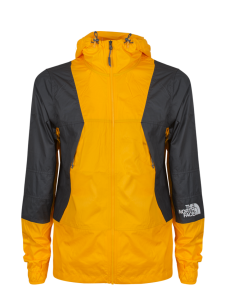 M MNT WINDSH ZINNIA ORANGE